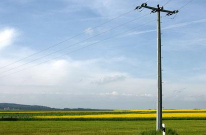 Rubati 700 metri di cavi elettrici sulle reti Enel in Basso Molise