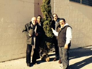 Il Comune consegna dieci alberi a scuole e associazioni