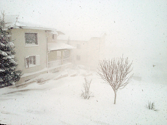 Molise paralizzato dalla neve, l'appello del prefetto: mettersi in viaggio solo se necessario