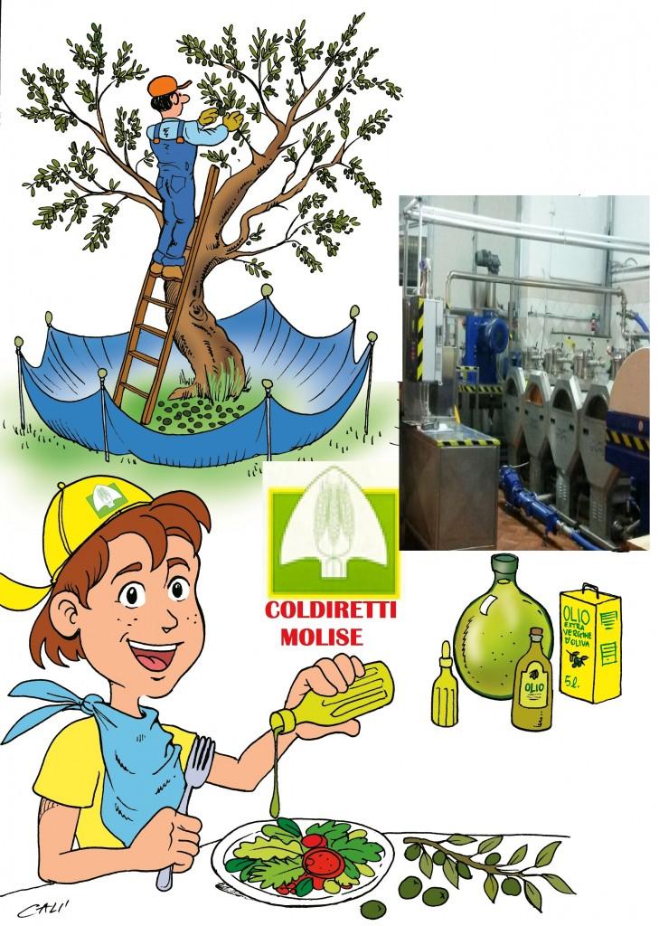 Olio d'oliva, la denuncia del Coprom