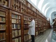 bibliotecario.jpg