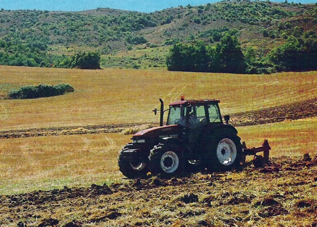 Contributi Pac, la Coldiretti si muove in favore delle imprese agricole