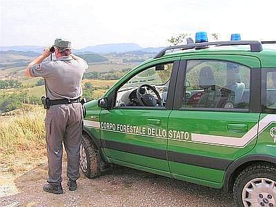 Forestale all'opera in provincia di Isernia
