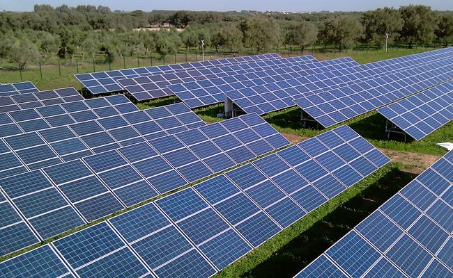 I Carabinieri recuperano 241 pannelli fotovoltaici trafugati a San Martino in Pensilis