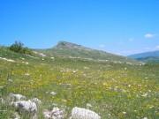 Capracotta-Agnone_5_Monte-Campo.jpg