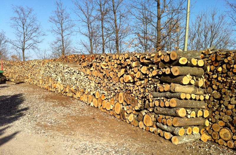 Rubano 10 quintali di legna, nei guai due persone