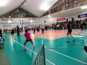 1-Volley-3.jpg