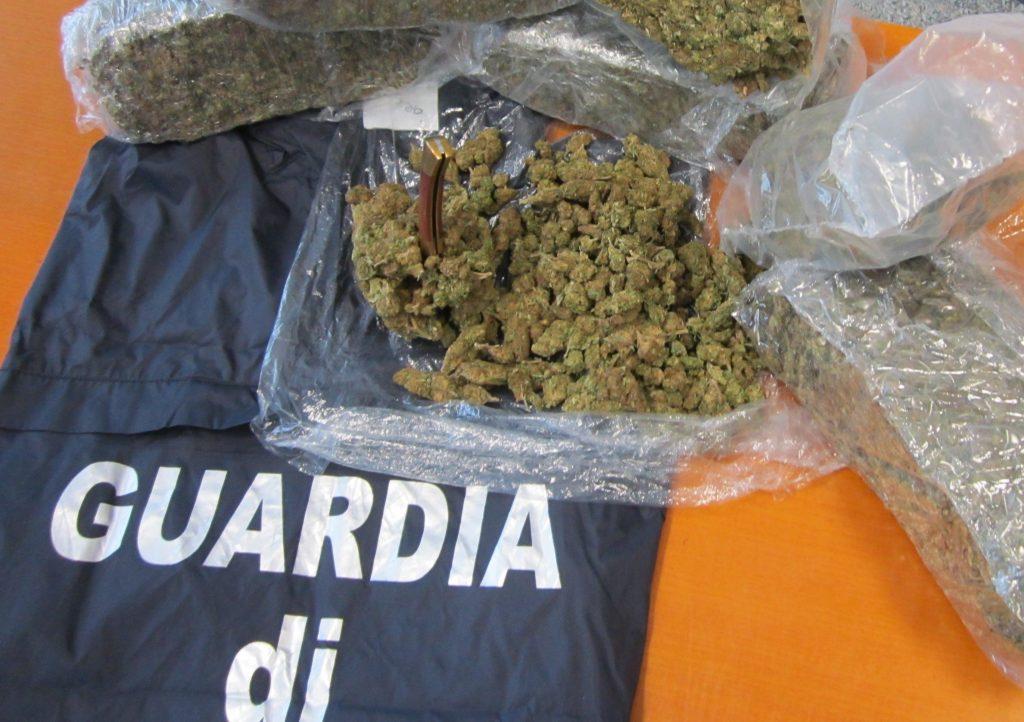 Nove chili di marijuana nella villa di famiglia, arrestato a Termoli Nick De Palma