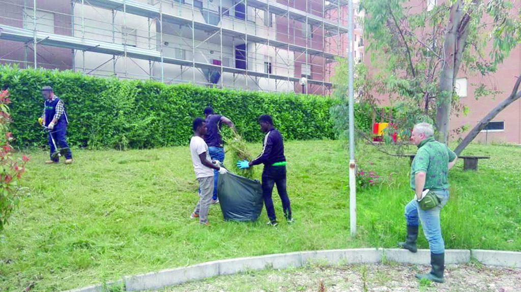 Campobasso, Parco Ungaretti: Fare Verde e migranti ripuliscono l'area infestata dalla vegetazione