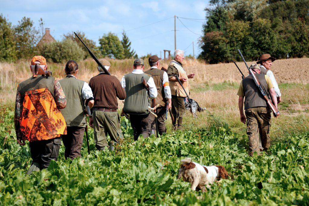 Approvato il calendario venatorio: dal 15 settembre parte la caccia in Molise