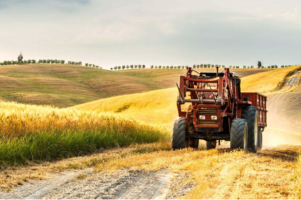 Agricoltura senza ristori Covid, la Cia attacca